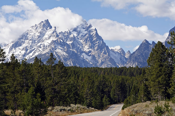 road near forest and Grand Teton peaks, Wyoming
